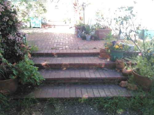 Steps up to Patio